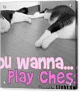 Play Chess? Acrylic Print