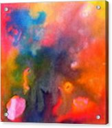 Play With Colours Acrylic Print