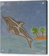Playful Dolphin Acrylic Print