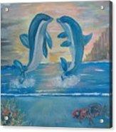 Playful Dolphins Acrylic Print