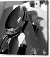 Playing With Shadows Acrylic Print