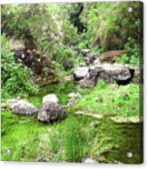 Pleasant Nature Acrylic Print