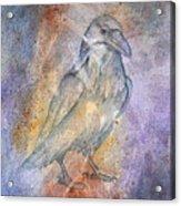 Pleistocene Raven 1 Acrylic Print