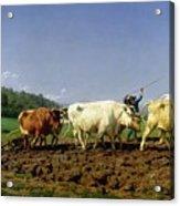 Ploughing In Nivernais Acrylic Print