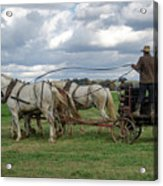 Plowing In Lancaster County Acrylic Print