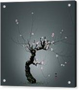 Plum Flower 0204 Acrylic Print