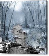 Pocono Mountain Winter Acrylic Print
