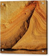 Point Lobos Abstract 108 Acrylic Print