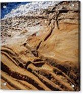 Point Lobos Abstract Acrylic Print