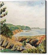 Point Lobos Acrylic Print by Don Perino