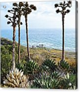 Point Loma Lighthouse Overlook Acrylic Print