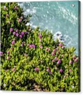 Point Reyes National Seashore Coast On Pacific Ocean Acrylic Print