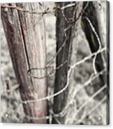 Points And Posts Acrylic Print