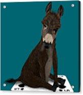 Poker Donkey Acrylic Print