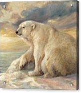 Polar Bear Rests On The Ice - Arctic Alaska Acrylic Print