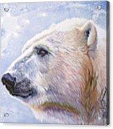 Polar Blue Acrylic Print