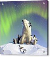 Polar Opposites Acrylic Print