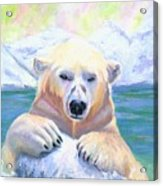 Polar Playtime Acrylic Print