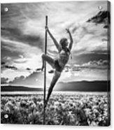 Pole Dance Reach Hdr Acrylic Print