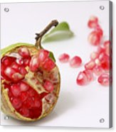 Pomegranate And Seeds  Acrylic Print