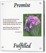 Promise Fulfilled Acrylic Print