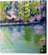 Pond 3 Acrylic Print