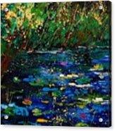 Pond 459030 Acrylic Print