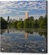 Pond And The Chicago Skyline Acrylic Print