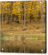 Pond And Woods Autumn 1 Acrylic Print