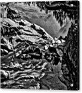 Pond At Great Falls #4 Acrylic Print