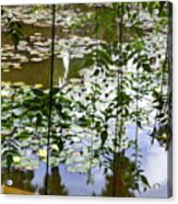 Pond In Marrakesh Acrylic Print