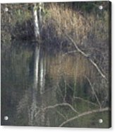 Pond In The Hollow Acrylic Print
