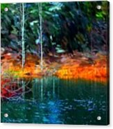 Pond In The Woods Acrylic Print