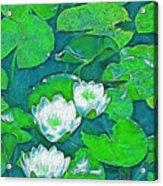 Pond Lily 2 Acrylic Print