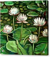 Pond Of Petals Acrylic Print