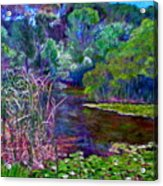 Pond Of Tranquility Acrylic Print