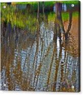 Pond Reflection Acrylic Print