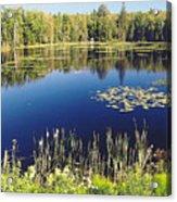 Pond To Ponder Acrylic Print