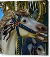 Pony Carrsouel Portrait Acrylic Print