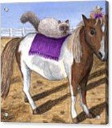 Pony Lil And Cat Annie Acrylic Print