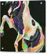 Pony Power II Acrylic Print