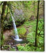 Ponytail Falls, Oregon Acrylic Print