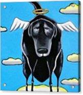 Poo Dog Goes To Heaven Acrylic Print