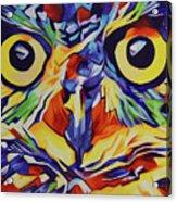 Pop Art Owl Face-1 Acrylic Print