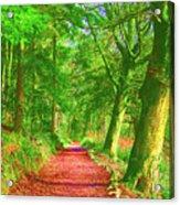 Pop Art Path Acrylic Print