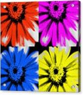 Pop Art Petals Acrylic Print