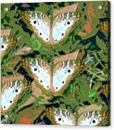 Pop Butterfly's Work Number Three Acrylic Print