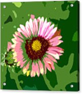Pop Flower Work Number 23 Acrylic Print