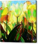 Popart Tulips Acrylic Print