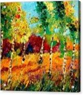 Poplars '459070 Acrylic Print